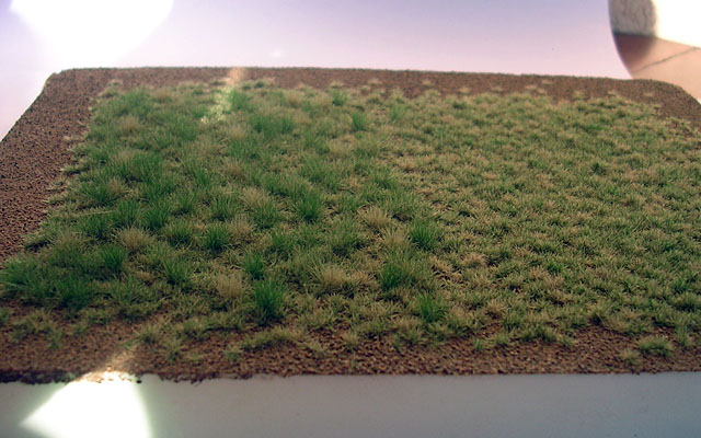 setí mixem trav 004-023 a 004-024, a trávou 004-24
