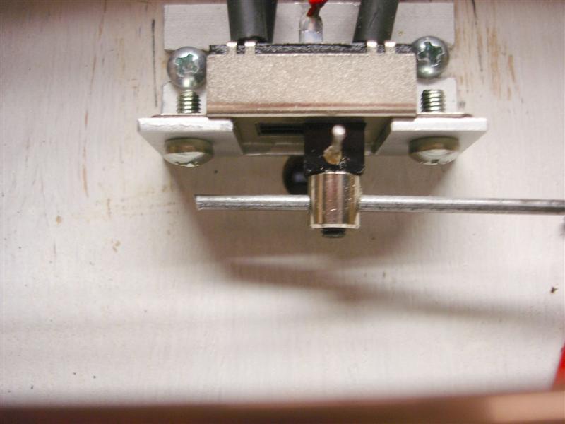 DSC01558 (Medium)
